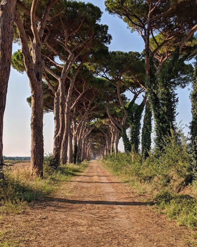 Toscana sempre.